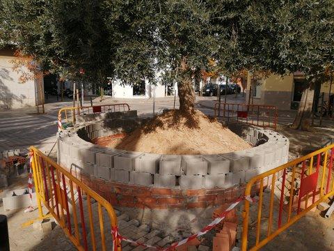 Mejora de varios parterres en la plaza Empordà